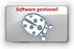 Software Gestionali